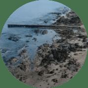 Punta del Este #114 años: Muelle de Mailhos; darse un buen baño descalzo…